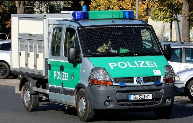 Renault-Transporter in grün, hinten ist ein weißer Kasten mit mehreren türen, dort werden die Hunde untergebracht